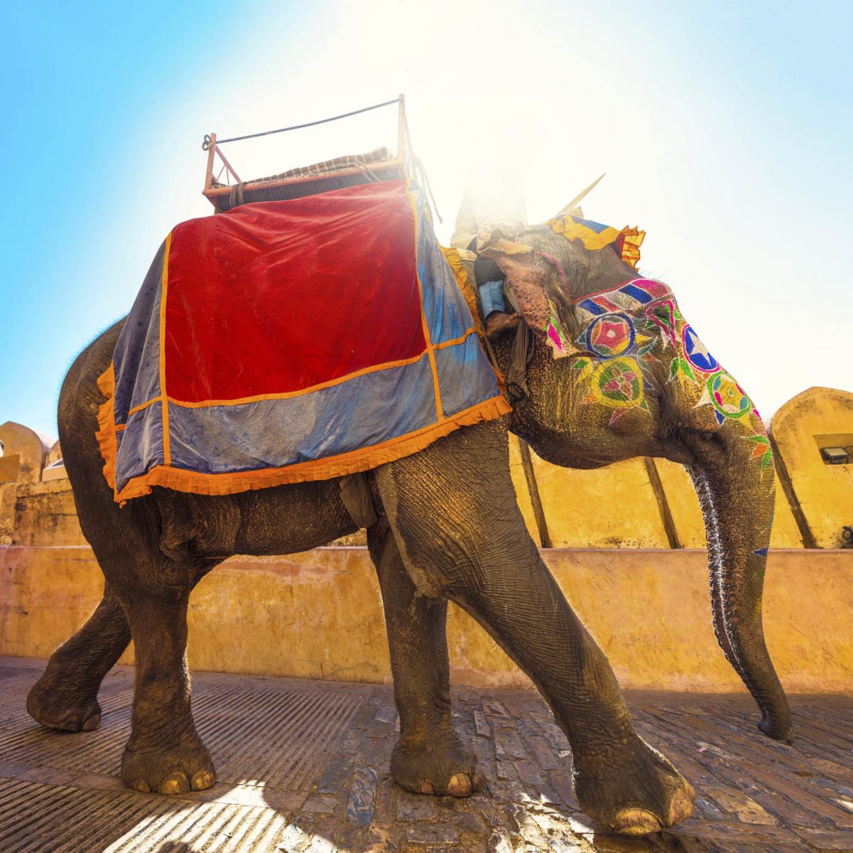Travel, Indien, India