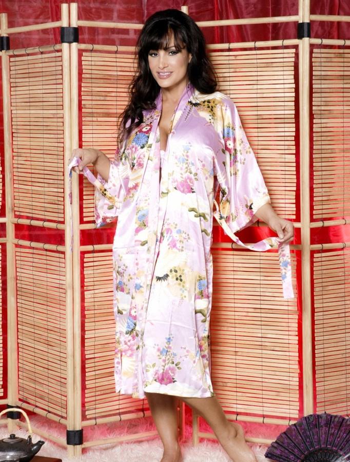 lisa_ann_hustlin_lingerie_20110112_1134542696