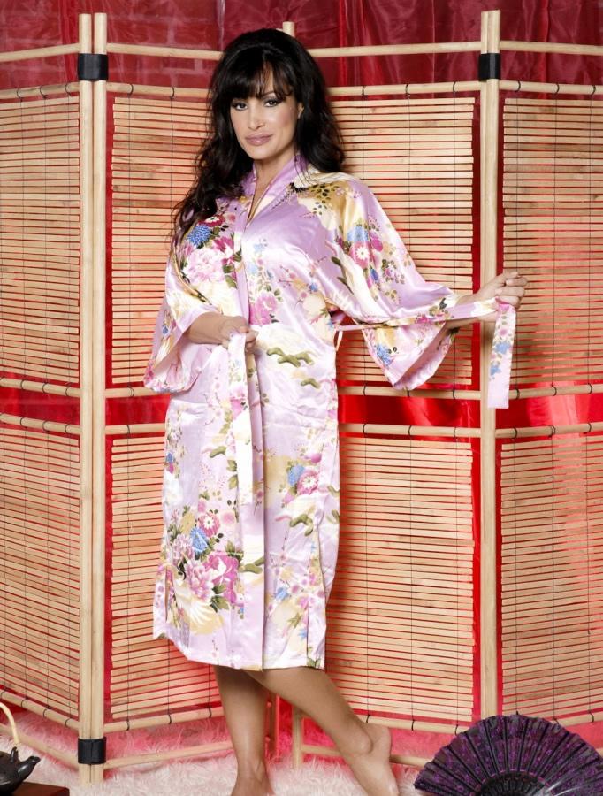 lisa_ann_hustlin_lingerie_20110112_1341725417