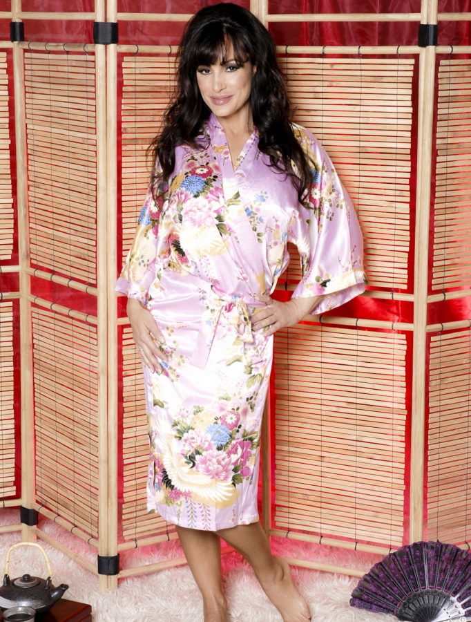 lisa_ann_hustlin_lingerie_20110112_1723806918