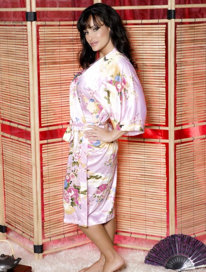 lisa_ann_hustlin_lingerie_20110112_1886267736