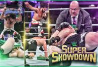 Seth Rollins is a Beast Slayer at WWE Super ShowDown